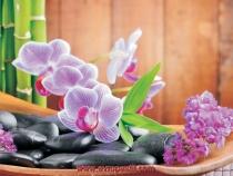 фото тапет с орхидея и спа камъни