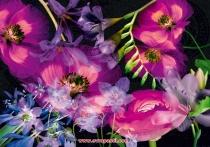 фототапети с големи цикламени цветя