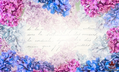 фототапети на писмо от люляк цветя