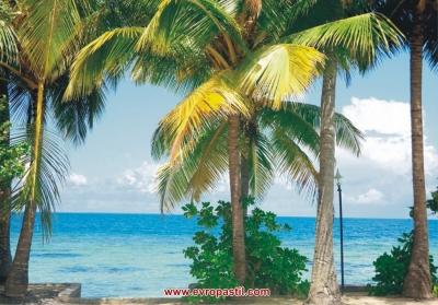 фототапети тропически бряг