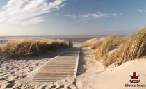 фототапети пътека в пясъка